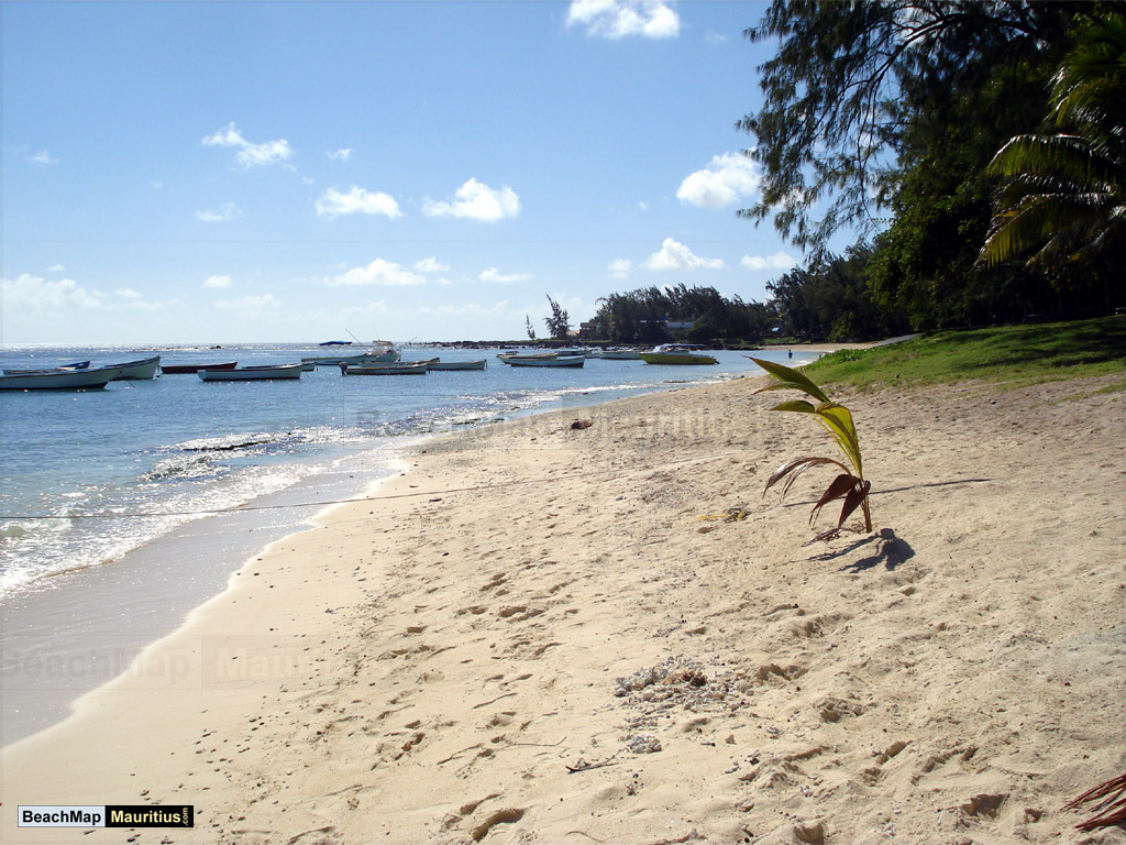 how to live in mauritius without corruption